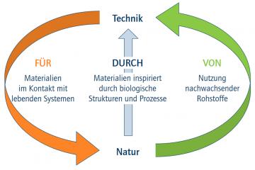acatech-ideenwettbewerb-biologisierung