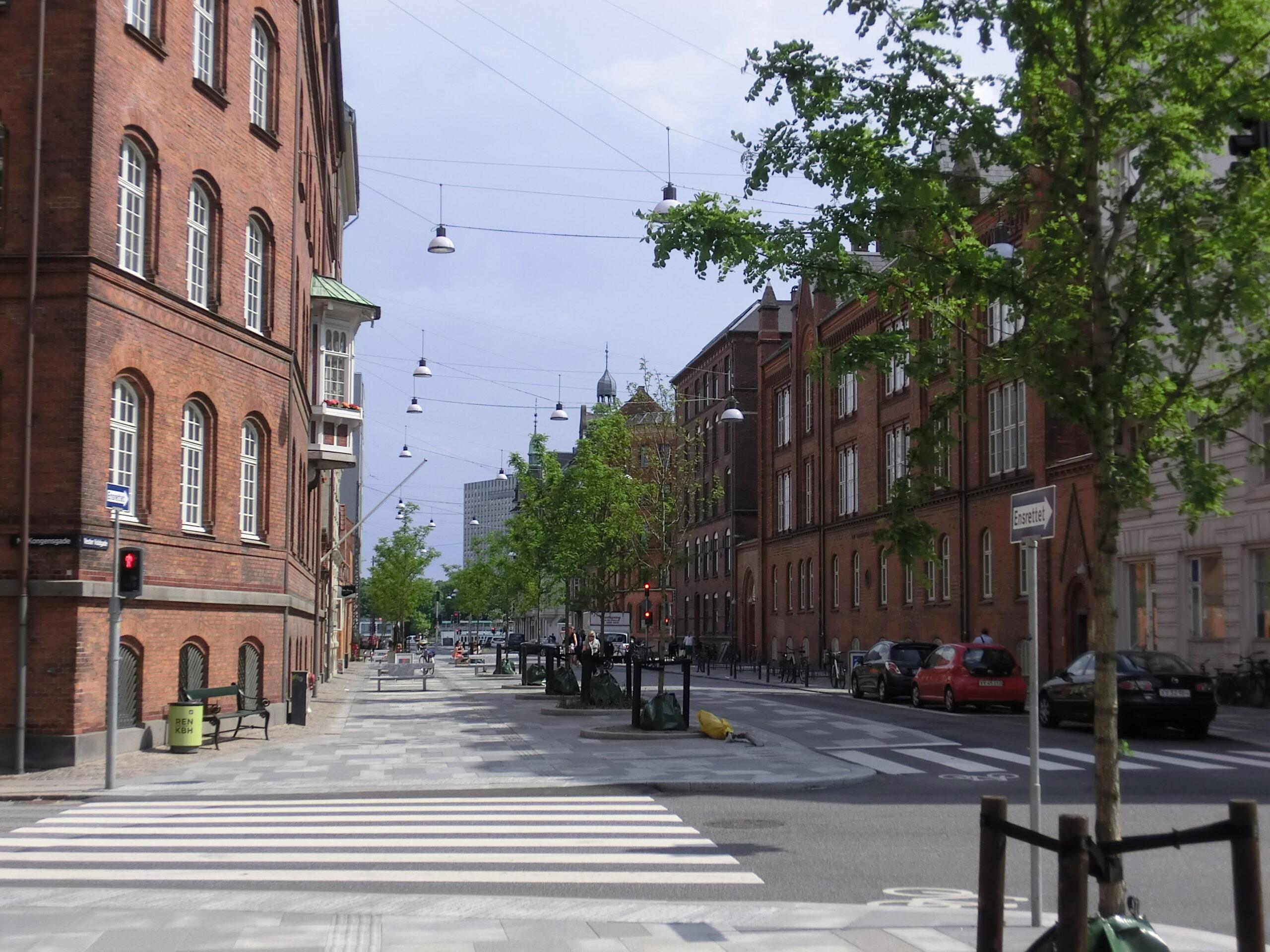 Foto einer Straße in Kopenhagen mit Häusern und Bäumen
